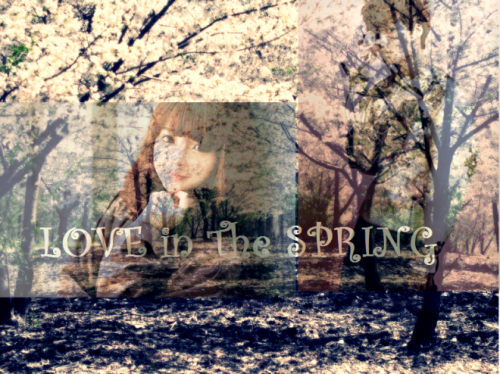 (1st Story) Love in The Spring